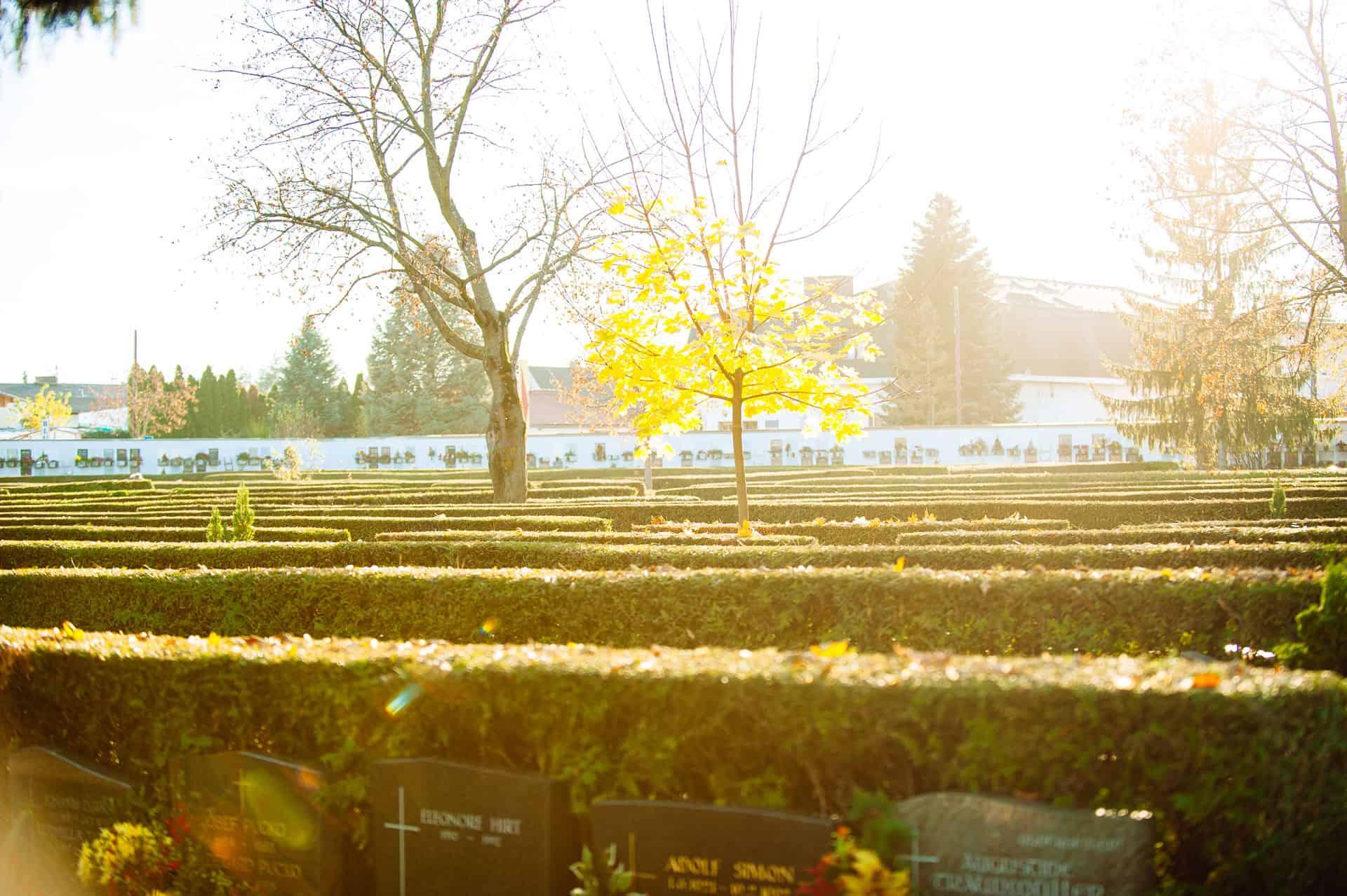 Holding Graz Bestattung - Urnenfriedhof - Bestattung - Feuerbestattung - Bestattung Graz 10