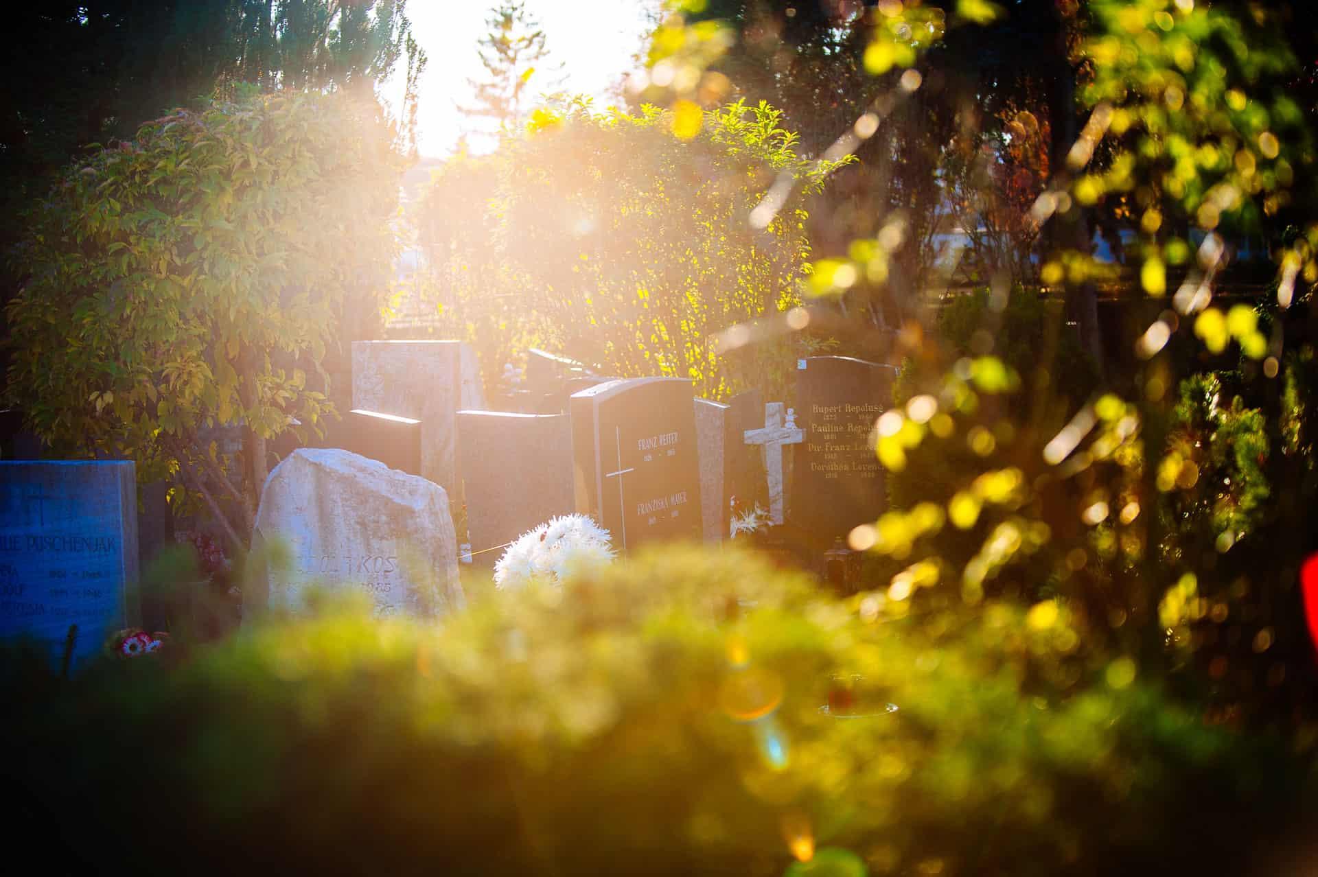 Holding Graz Bestattung - Urnenfriedhof - Bestattung - Feuerbestattung - Bestattung Graz 14