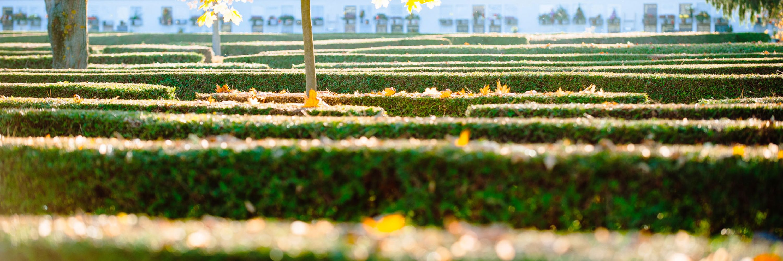 Holding Graz Bestattung - Urnenfriedhof - Bestattung - Feuerbestattung - Bestattung Graz 9