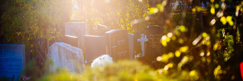 Urnenfriedhof 2